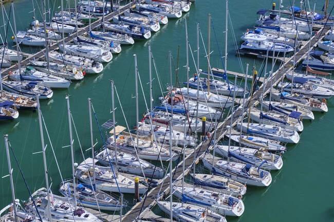 Portugal, Lisboa, Tejo, Belem, veleros amarrados en puerto deportivo - foto de stock