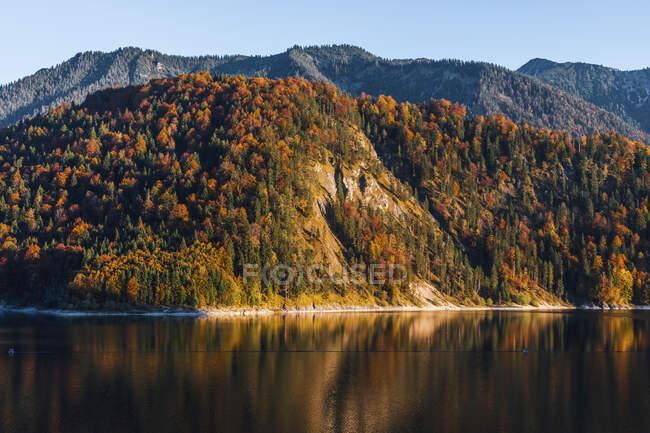 Vista panorâmica do lago Sylvenstein contra a floresta contra o céu limpo durante o outono, Baviera, Alemanha — Fotografia de Stock