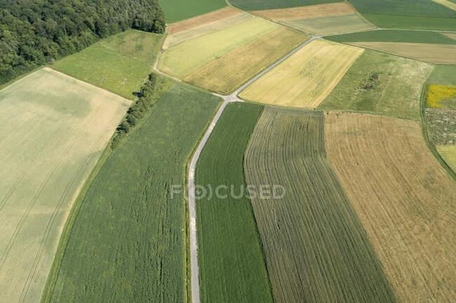 Alemania, Baviera, Franconia, Vista aérea de campos verdes y camino de tierra - foto de stock