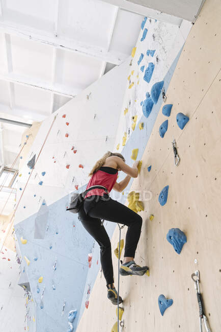 Женщина лазает по стене в спортзале — стоковое фото