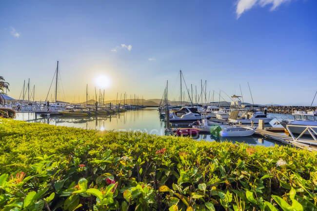 Австралия, Квинсленд, Лодки в гавани около Airlie Beach на закате — стоковое фото
