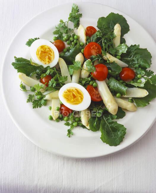 Asparagus salad with Italian dandelions, peas and eggs — Stock Photo