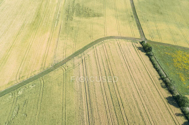 Germany, Bavaria, Franconia, Aerial view of green fields and dirt road — Stock Photo