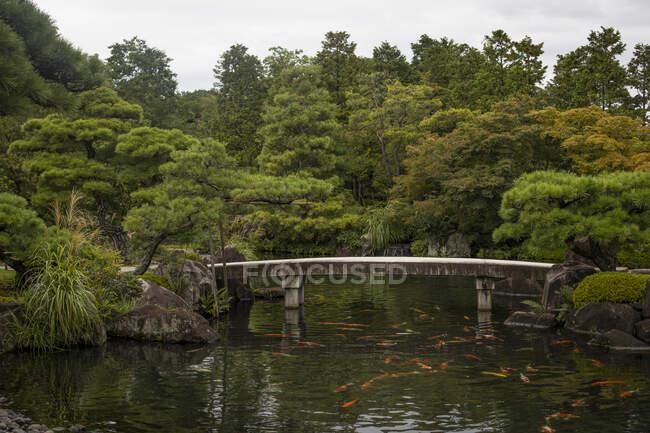 Japan, Himeji, Pond with koi carps and footbridge in Adelaide Himeji Gardens — Stock Photo