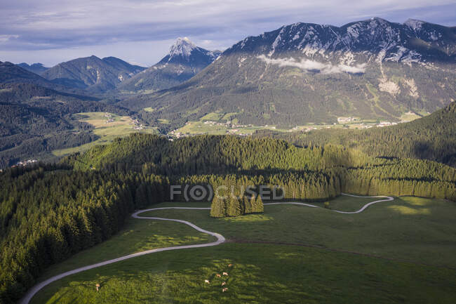 Austria, Tyrol, Eben am Achensee, Aerial view of winding road and green alpine forest in summer — Stock Photo
