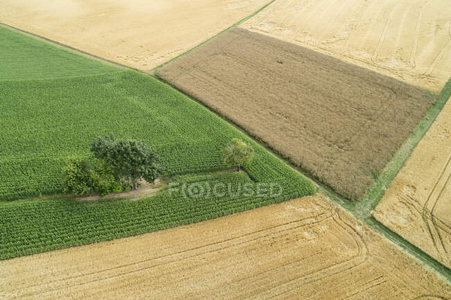 Germany, Bavaria, Drone view of green and yellow countryside fields in summer — Stock Photo