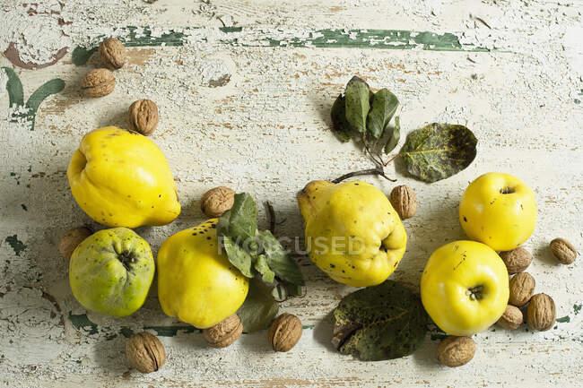 Quinces (Cydonia oblonga) с листьями и орехами на деревенской деревянной поверхности — стоковое фото