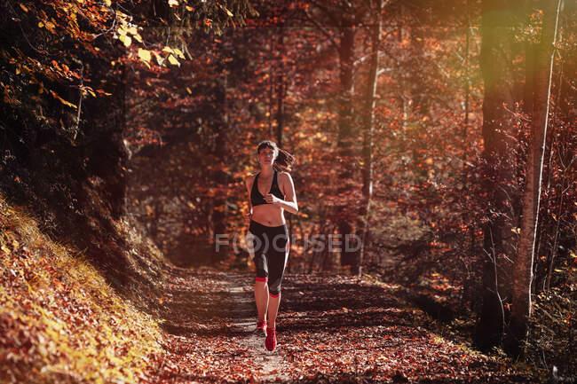 Бег женщин в осеннем лесу — стоковое фото