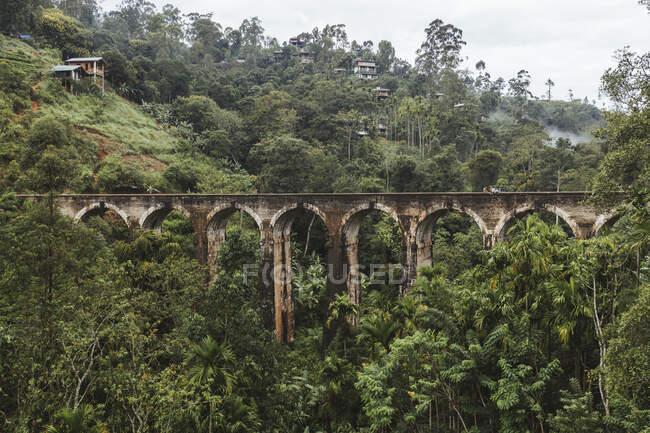 Sri Lanka, Provincia de Uva, Demodara, Vista aérea del Puente de los Nueve Arcos a través del verde valle boscosa - foto de stock