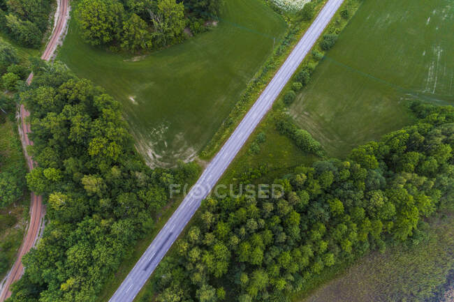 A road in the Tjust region, Sweden — Stock Photo