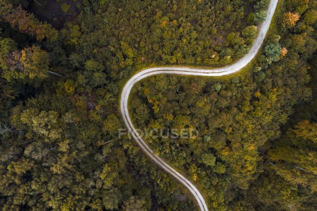 Austria, Bassa Austria, Veduta aerea della strada sterrata tortuosa attraverso la vasta foresta autunnale — Foto stock
