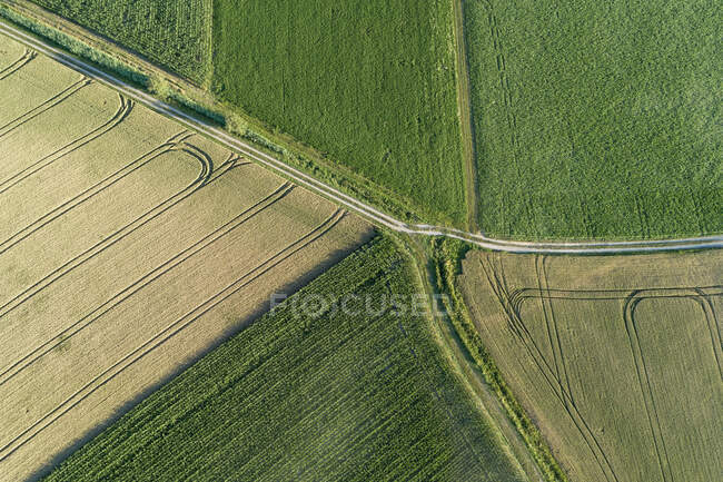 Germany, Bavaria, Drone view of patchwork fields in summer — Stock Photo