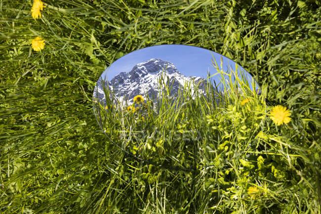 Rodada mirroe deitado na grama, refletindo as montanhas de Val Badia, Alto Adige, Ilaty — Fotografia de Stock