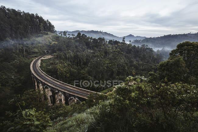 Sri Lanka, provincia di Uva, Demodara, ponte di nove archi attraverso la verde valle boscosa — Foto stock