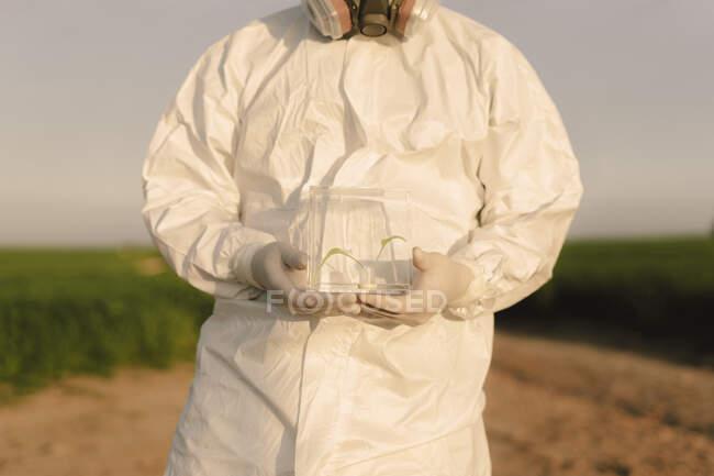 Hombre con traje protector en el campo sosteniendo plántulas en caja de vidrio - foto de stock
