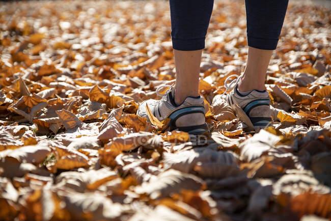 Покриття спотикання жінки стоячи осіннє листя — стокове фото
