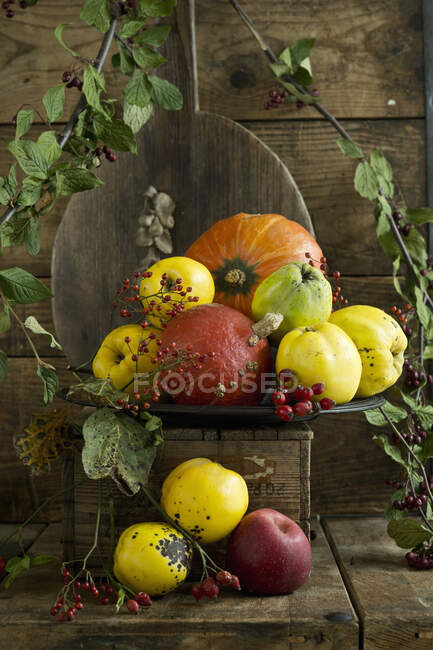 Quinces (Cydonia oblonga) with leaves, Hokkaido gourds (Cucurbita maxima), apples and rose hips on rustic wooden crate — Stock Photo