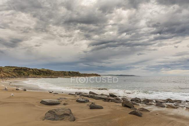 Nueva Zelanda, Oceanía, Isla Sur, Southland, Otara, Waipapa Point beach - foto de stock