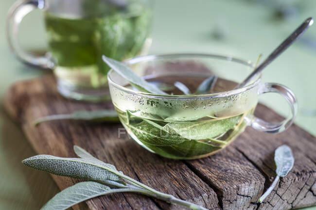 Cup of hot sage tea — Stock Photo