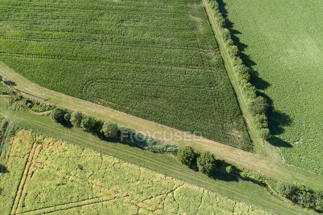 Germany, Bavaria, Drone view of green countryside fields in summer — Stock Photo