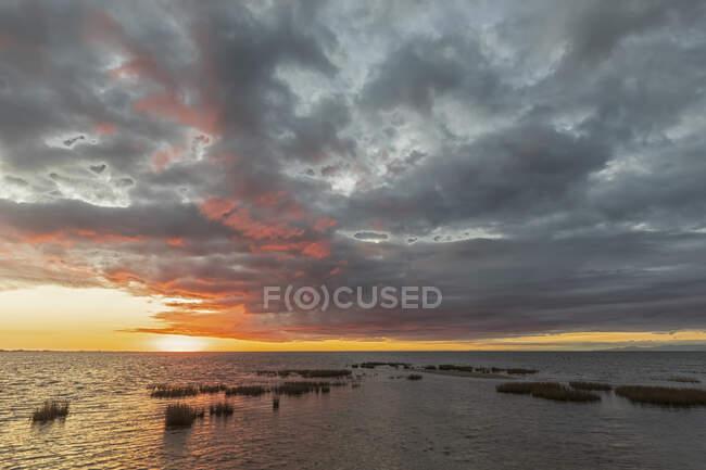 Nueva Zelanda, Distrito de Tasman, Pupone, Bahía de Oro al amanecer nublado - foto de stock
