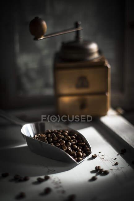 Schöpflöffel geröstete Kaffeebohnen mit Kaffeemühle im Hintergrund — Stockfoto
