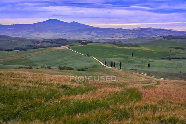 Italie, Toscane, Vallée de l'Orcia, Pienza, Champs et collines au coucher du soleil — Photo de stock