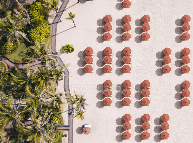 Indonesia, Bali, Aerial view of umbrellas and palms on beach — Stock Photo