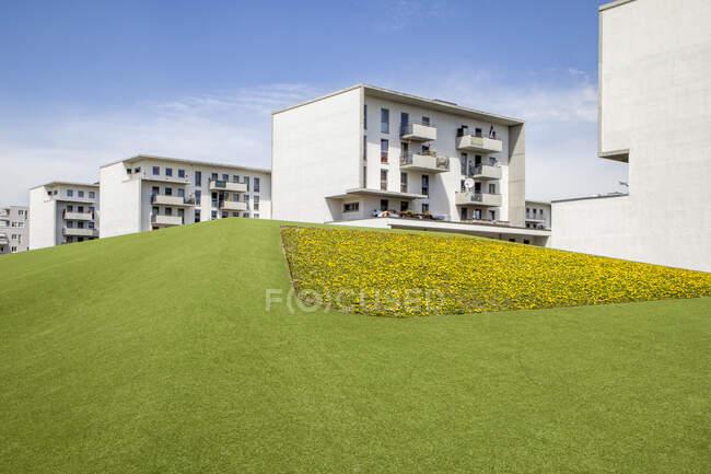 Germania, Baviera, Monaco di Baviera, Prato verde di fronte a edifici residenziali a Theresienpark — Foto stock