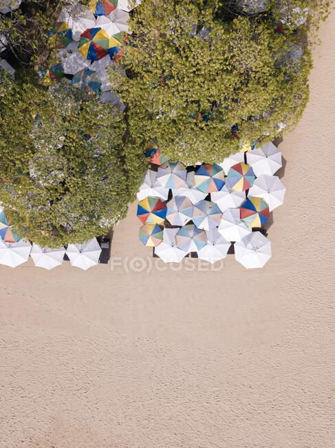 Indonesia, Bali, Nusa Dua, Veduta aerea degli ombrelloni sulla spiaggia — Foto stock