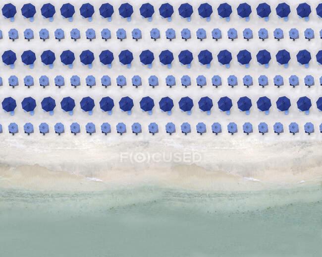 Aerial view of rows of blue beach umbrellas standing along sandy coastal beach — Stock Photo
