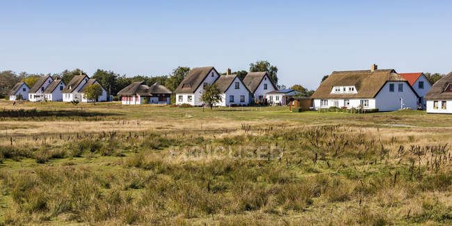 Germany, Mecklenburg-Western Pomerania, Neuendorf, Grass in front of village houses in spring — Stock Photo