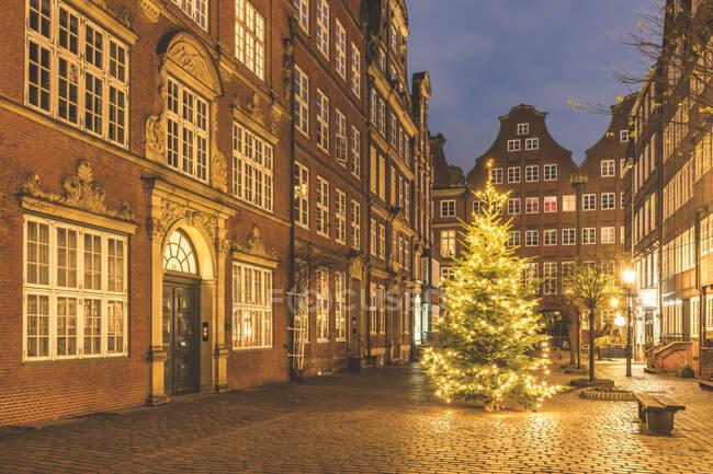 Allemagne, Hambourg, sapin de Noël rayonnant au milieu de Peterstrasse au crépuscule — Photo de stock