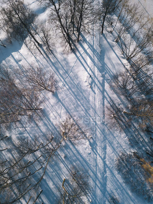 Russia, Leningrad Oblast, Tikhvin, Aerial view ofsnow-coveredroad surrounded by bare trees — Stock Photo