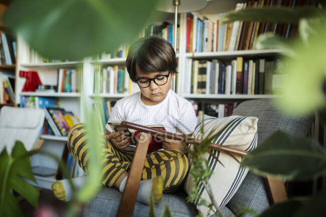 Portrait of concentrated boy with glasses sitting on armchair reading book — Stock Photo
