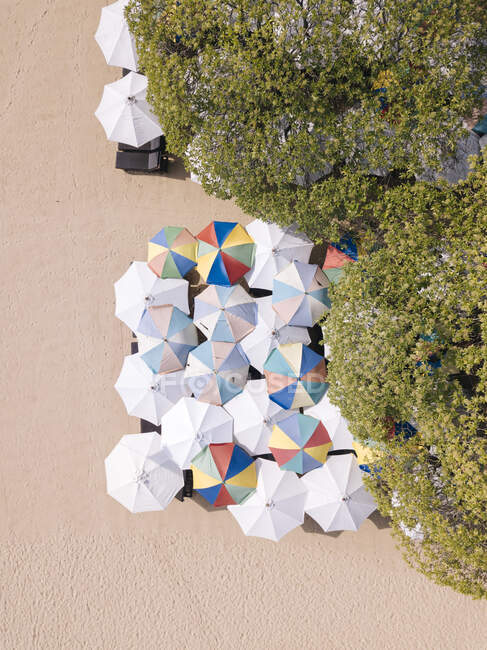 Indonesia, Bali, Nusa Dua, Vista aérea de sombrillas en la playa - foto de stock