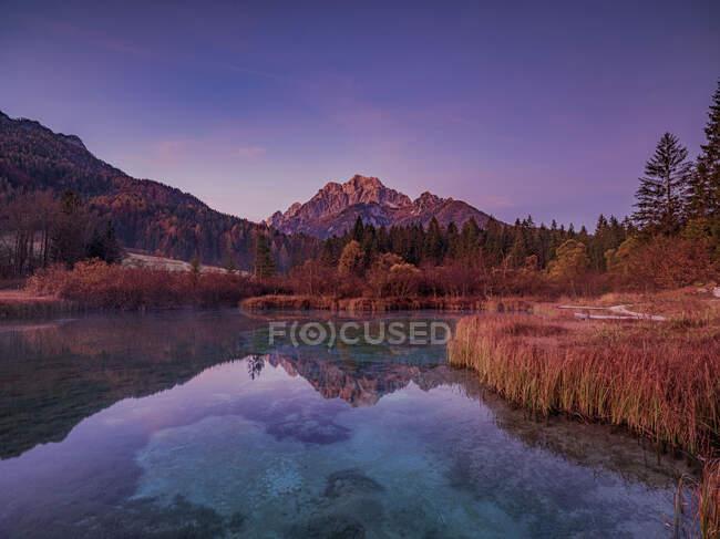 Slovenia, Kranjska Gora, Veduta panoramica del lago Zelenci al tramonto — Foto stock