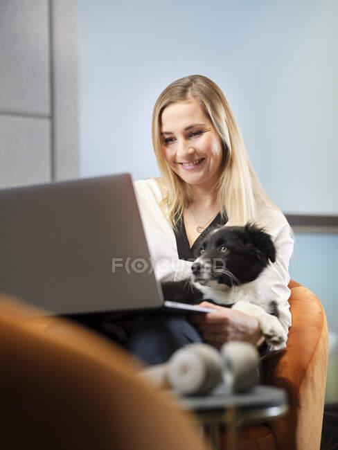 Empresaria con perro sentada en sillón usando laptop - foto de stock