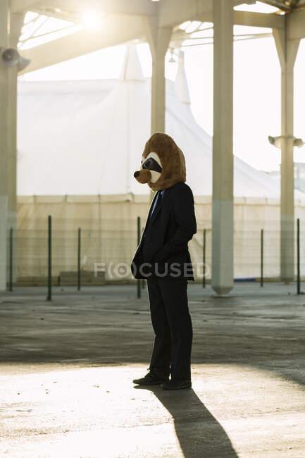 Empresário de terno preto com máscara meerkat em pé no backlight, Barcelona, Espanha — Fotografia de Stock