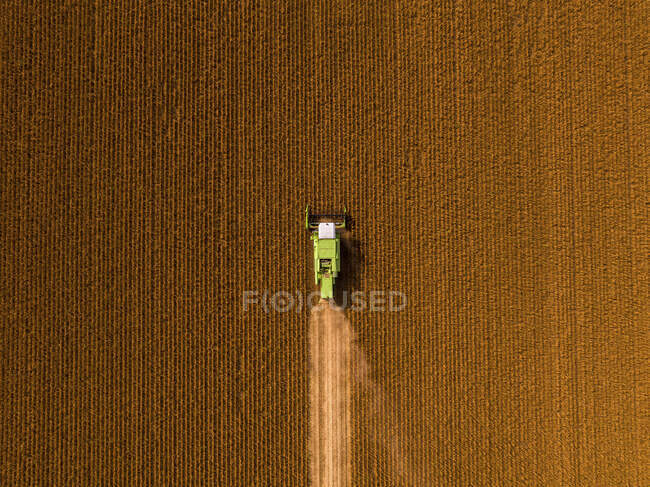 Aerial view of combine harvester on a field of soybean — Stock Photo