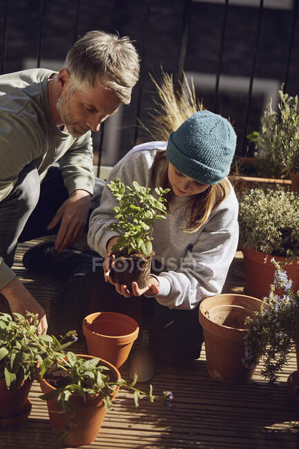 Father and daughter planting together on balcony — Stock Photo