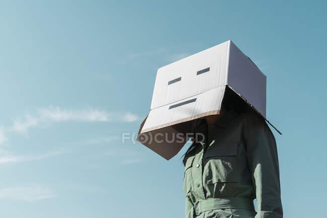 Mujer con caja de cartón en la cabeza de pie contra el cielo - foto de stock
