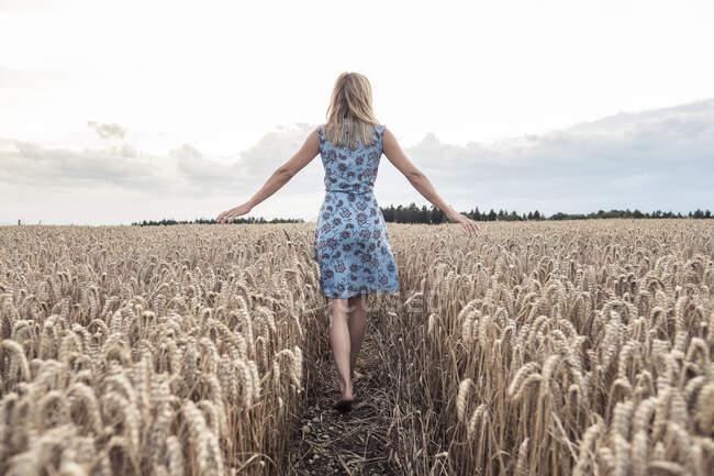 Вид на босиком женщину, идущую по пшеничному полю — стоковое фото