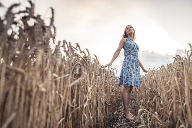 Barfüßige Frau steht in der Abenddämmerung in einem Weizenfeld — Stockfoto