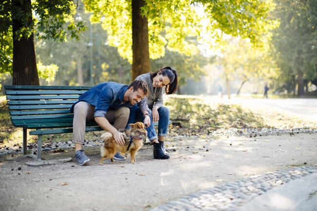 Feliz joven pareja con perro en un parque sentado en un banco - foto de stock