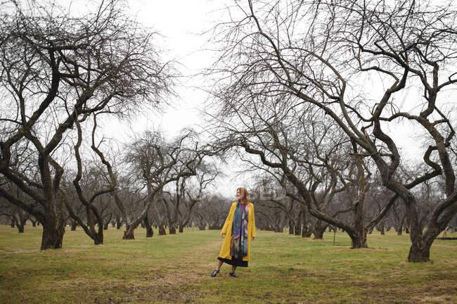 Longitud completa de la mujer en el abrigo amarillo de pie en medio de árboles desnudos en el parque, Rusia, Moscú - foto de stock