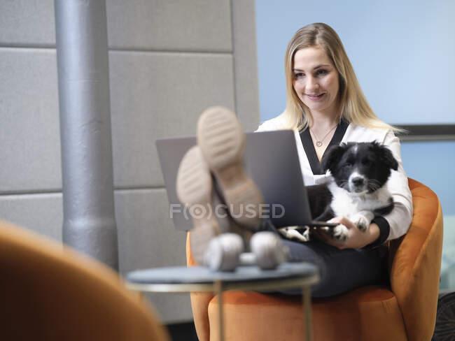 Зайнята жінка з собакою сидить у кріслі за допомогою ноутбука. — стокове фото