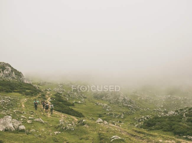 Spagna, Cantabria, Gruppo di escursionisti backpackers a Picos de Europa durante il tempo nebbioso — Foto stock