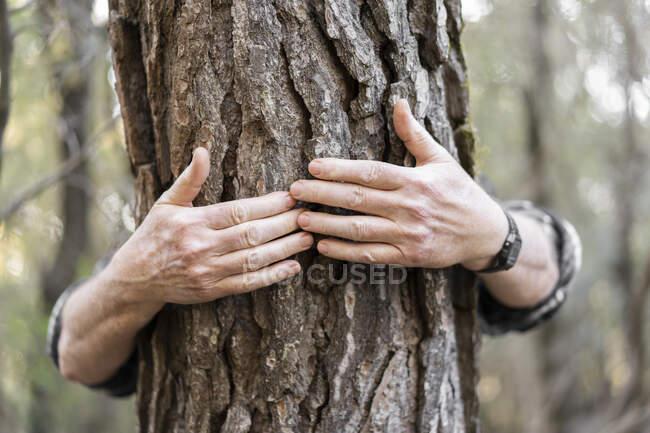 Senior man's hands hugging tree trunk, close-up — Stock Photo