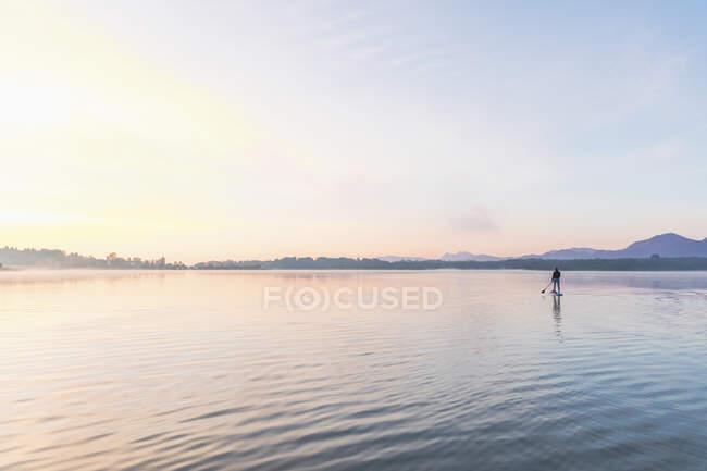 Mujer de pie en sup board por la mañana en un lago, Alemania - foto de stock